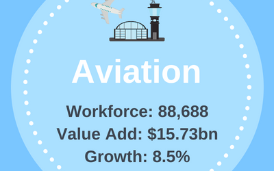 Aviation Industry Infographic