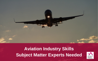 AVI Industry Skills Project – Call for experts