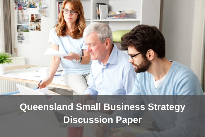 QLD Small Business Strategy Discussion Paper