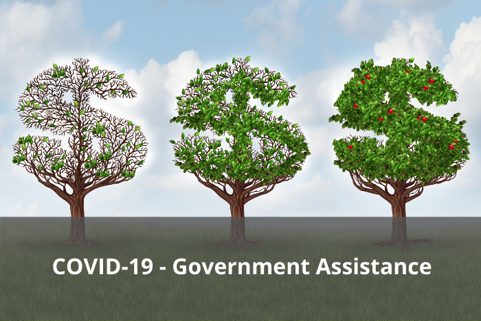 COVID-19 Government Assistance