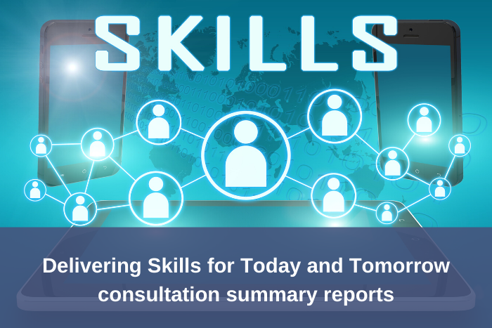 Skills Package co-design summaries