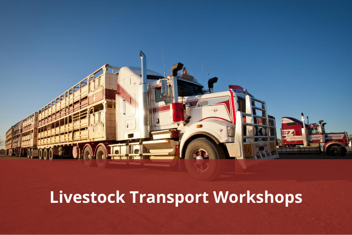 Livestock Transport Workshops
