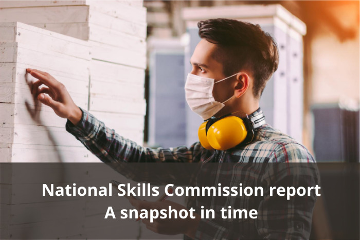 National Skills Commission - A Snapshot in Time