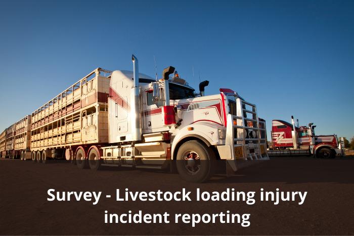 Livestock operators survey